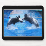 Whale Photo Mouse Pad